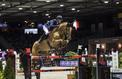 Les pelouses de Bercy abîmées par les finales de la Coupe du monde d'équitation
