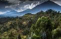 Rwanda, le grand retour
