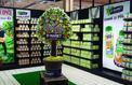 St Mamet, le leader français du fruit en sirop, mis en vente