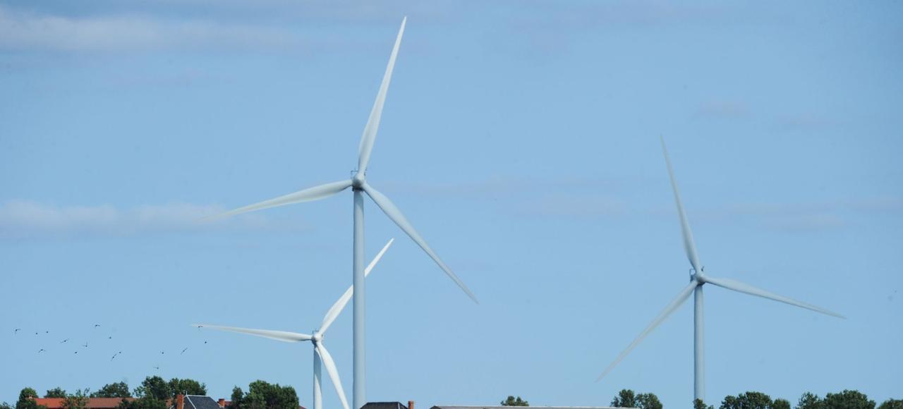 Parc d'éoliennes dans la Beauce. La France compte plus de 5.500 éoliennes installées, qui fournissent 3,7% de l'électricité consommée.