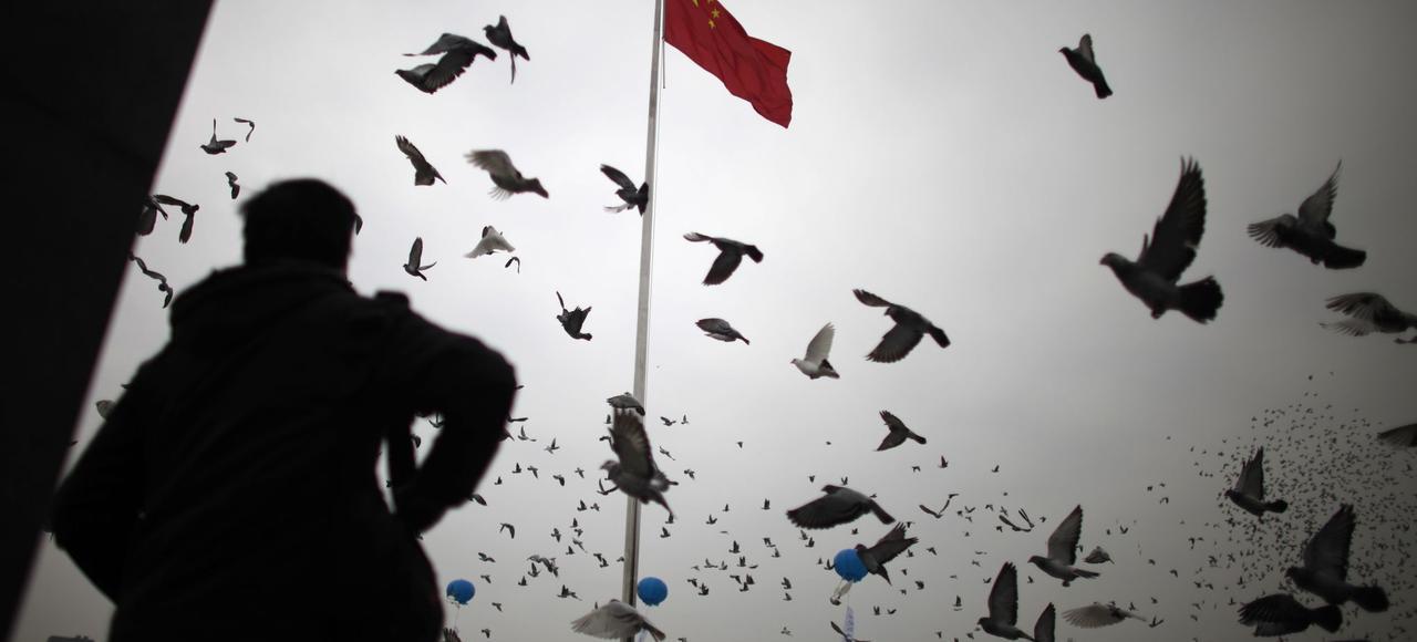 Un lâcher de pigeons lors d'une cérémonie à Nanjing, en Chine.