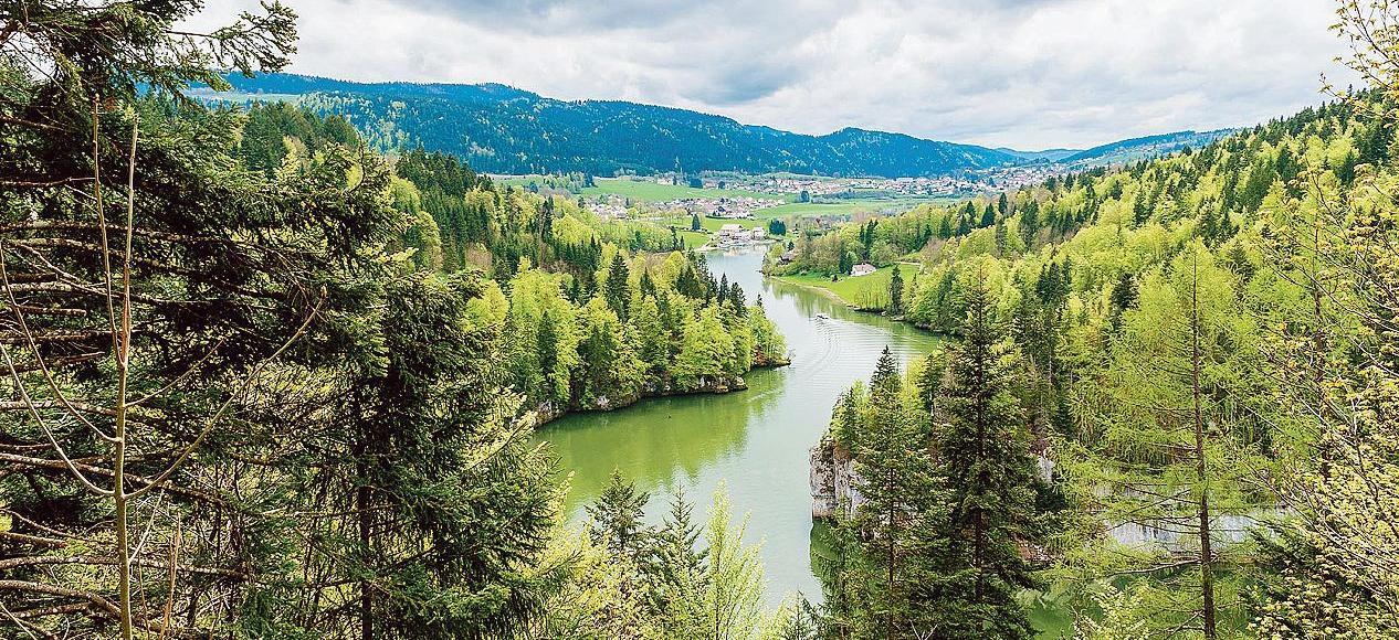 «Il est important de se concentrer sur les autres services rendus par la forêt tels que le maintien de la biodiversité, la lutte contre l'érosion ou la production de bois»,explique la chercheuse Aude Valade.