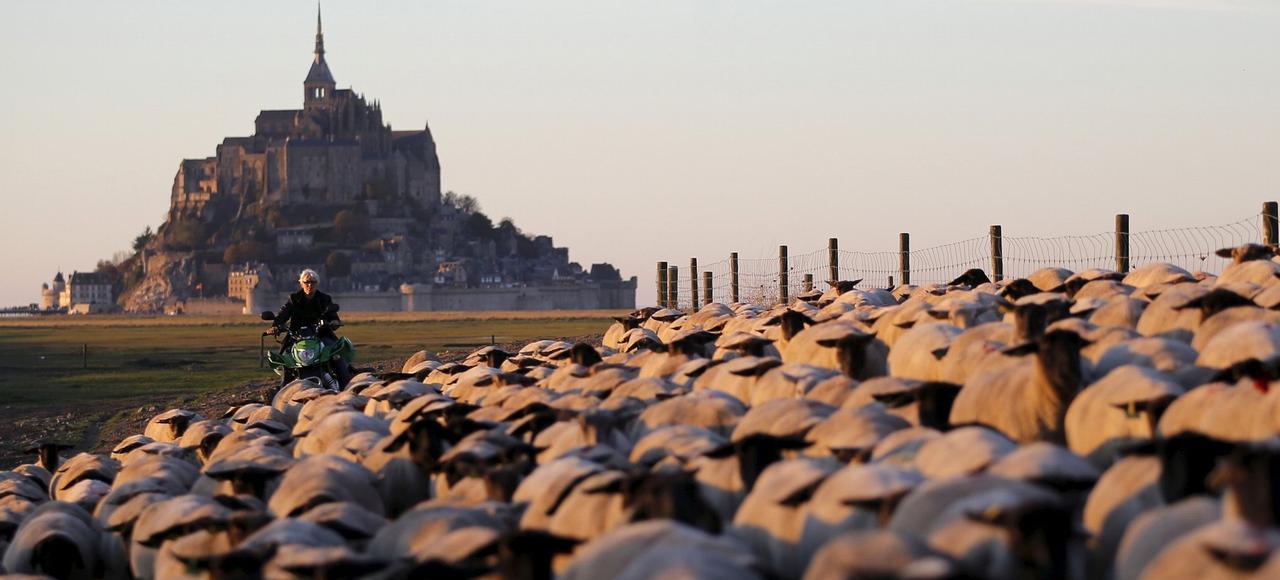 La baie du Mont-Saint-Michel.
