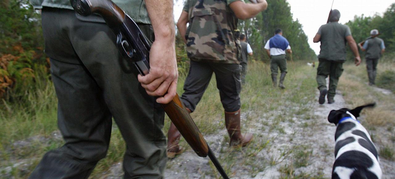 En France, il y a 1,2million de chasseurs français et quelque 80.000associations cynégétiques.