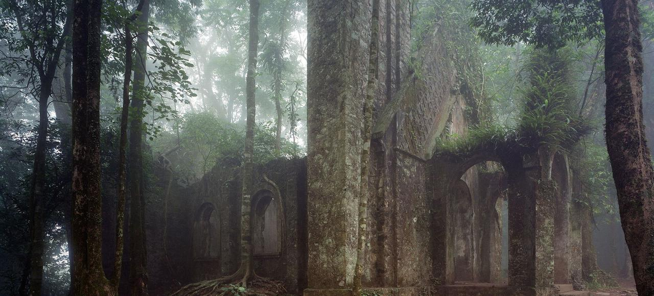 Dans cette église en ruine, lentement digérée par la végétation, au cœur du massif forestier du mont Ba Vi, à une cinquantaine de kilomètres de Hanoï (Vietnam), les fidèles venaient prier chaque dimanche.