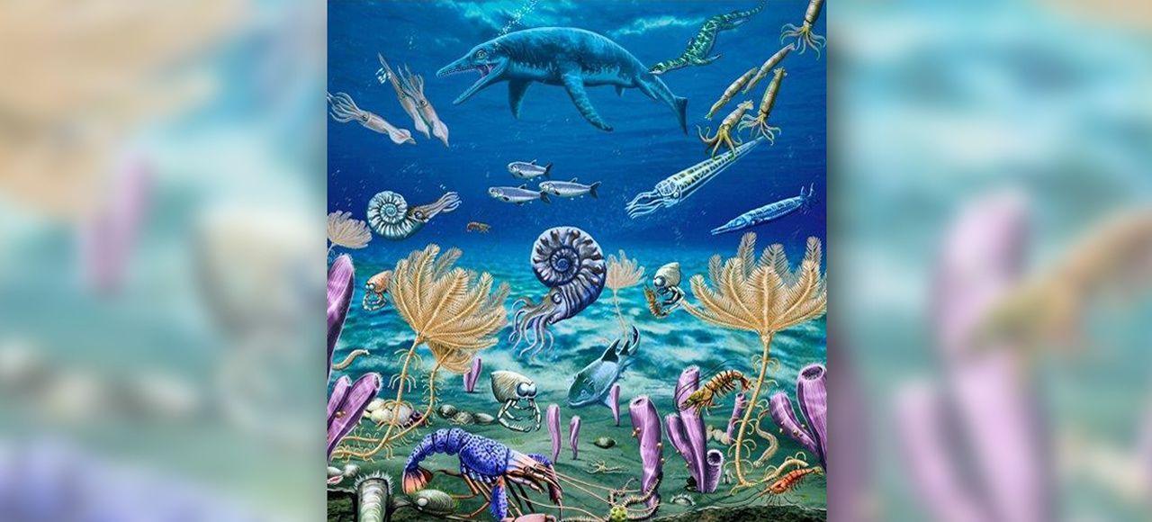 Vue d'artiste de la faune marine qui s'est reconstituée après la grande extinction il y a 252 millions d'années.