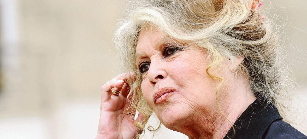 «La cause des animaux, ce thème important et urgent, est prise avec le plus grand mépris par les candidats à la présidentielle», estime Brigitte Bardot.