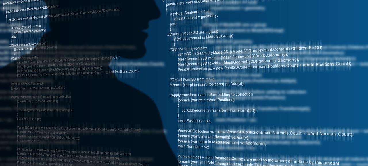 Les attaques par déni de service, qui rendent inaccessible un site Internet en lui envoyant un très grand nombre de connexions, sont très courantes.
