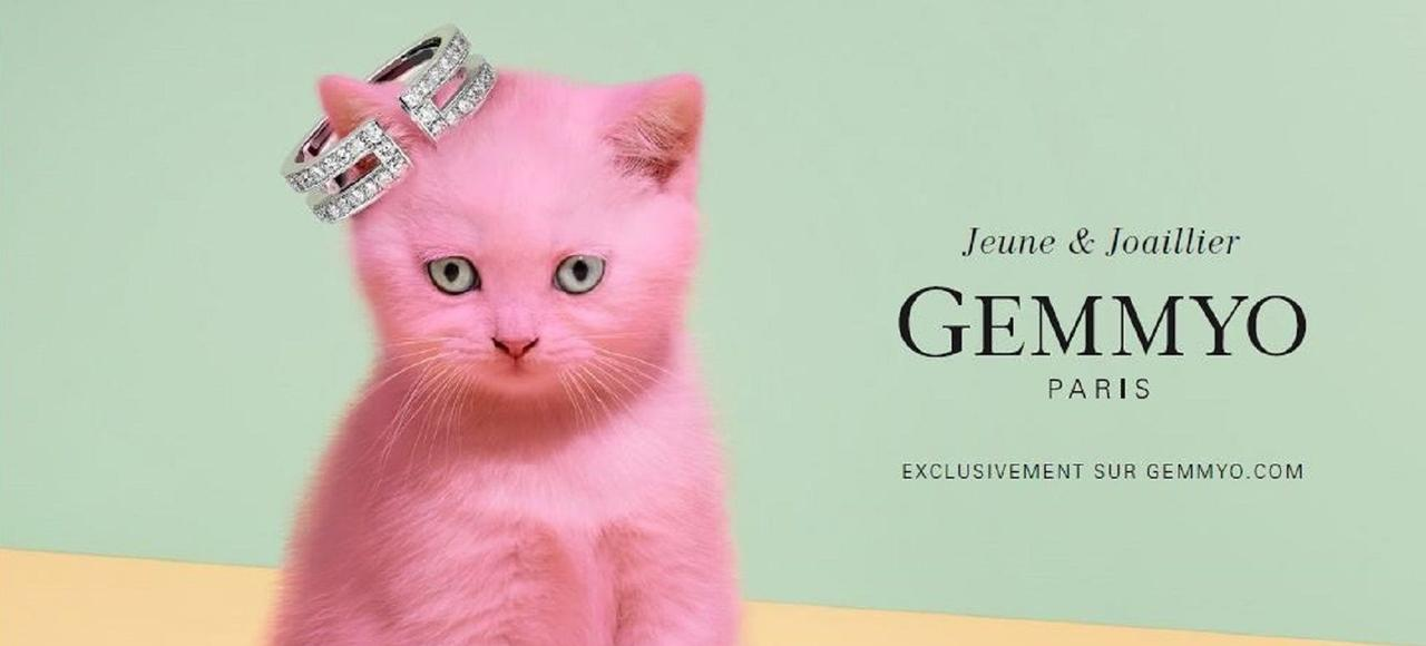 Six ans après sa création, l'enseigne au chat rose parie sur le développement de boutiques pour accompagner sa croissance.