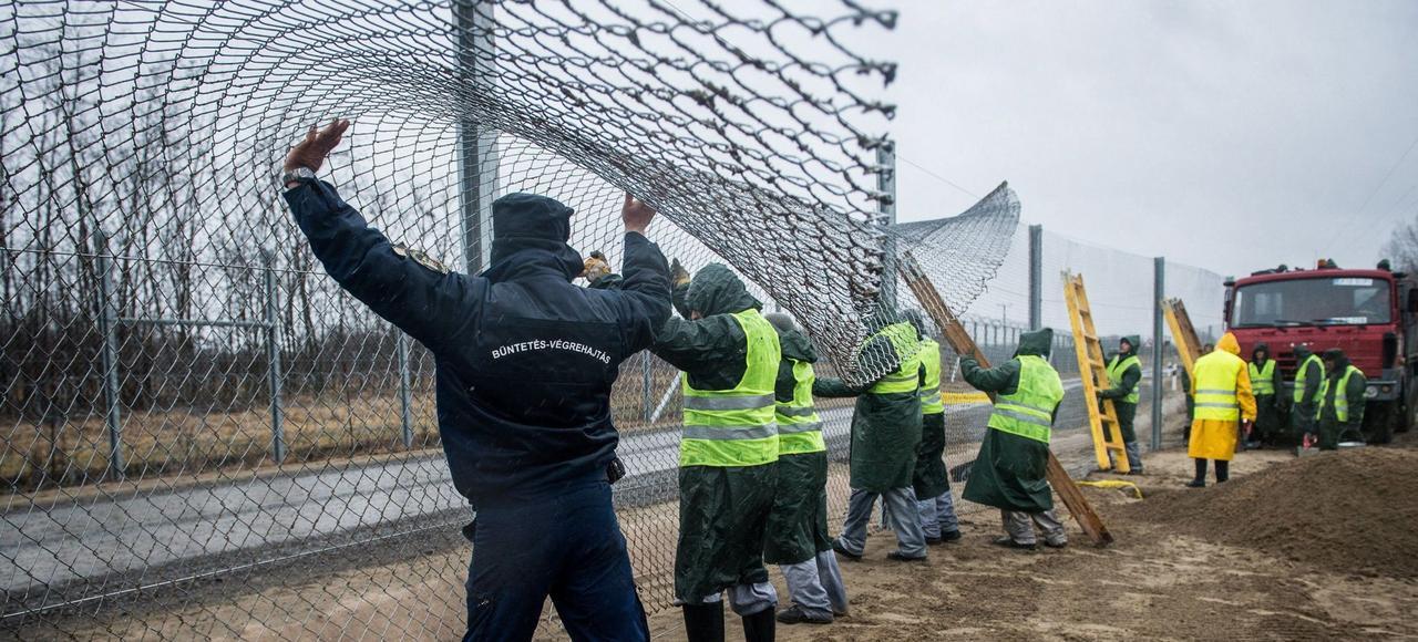Des prisonniers réquisitionnés construisent une deuxième barrière antimigrants parallèle aux barbelés de la première, le 1er mars à la frontière serbo-hongroise.