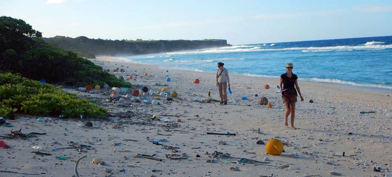 La petite île Henderson, perdue au milieu du Pacifique, croule sous les déchets plastiques.