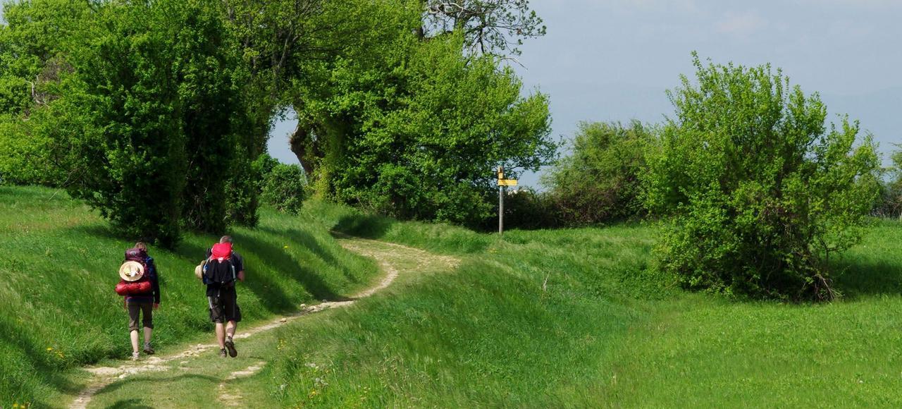 <i>Guide des chemins depèlerinage</i> recense trente-cinq itinéraires, longs de 7 à 7000kilomètres.