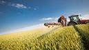 La justice suspend la vente de deux nouveaux pesticides