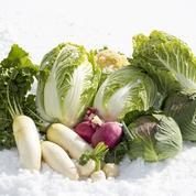 Comment profiter de ses légumes tout l'hiver