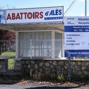 L'abattoir d'Alès reprend son activité sous contrôle vétérinaire