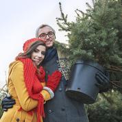 Comment donner une seconde vie à votre sapin de Noël