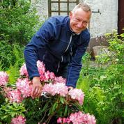 Peut-on tailler des rhododendrons de plus de 30 ans?