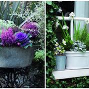 Des jardinières fleuries et colorées même en hiver