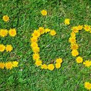Jardin: les pesticides «bio», c'est pour bientôt ?