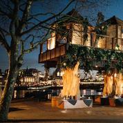 Une cabane dans les arbres en plein cœur de Londres