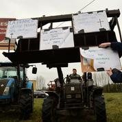 Retour sur deux mois de colère agricole