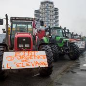 Les cotisations des agriculteurs ont-elles déjà baissé?