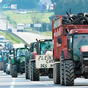 Les agriculteurs mobilisés malgré la baisse de leurs charges