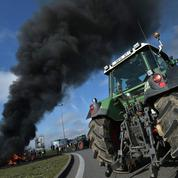 Les huit raisons du déclin de l'agriculture française