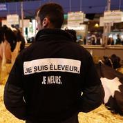Intermarché visé par une enquête de Bruxelles pour son soutien aux éleveurs