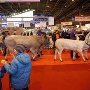 De 30.000 à 250.000 euros, le coût d'un stand au salon de l'agriculture