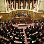 Le Sénat adopte sa version de la déchéance de nationalité