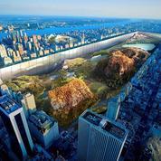New York: le projet décalé de deux artistes pour modifier Central Park
