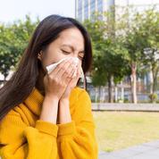 Le mûrier-platane provoque-t-il de l'asthme ?