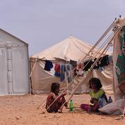 Fragile trêve au Yémen, plongé dans l'une des pires crises humanitaires actuelles