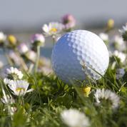 Golf: comment créer une prairie fleurie sur un green ?
