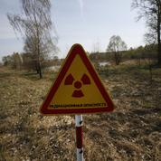 Tchernobyl : «Le principal danger vient des aliments contaminés»