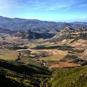 Corse: un terroir viticole en quête d'excellence