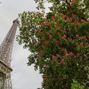 Et maintenant, Booking.com veut vendre aussi des billets pour la tour Eiffel