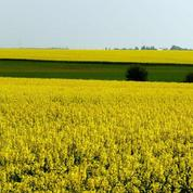 Les agriculteurs de la FNSEA dénoncent les excès de l'écologie