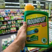 Le sort du Roundup bientôt scellé à Bruxelles