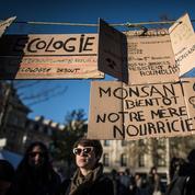 Qui est Monsanto, ce géant des semences qui vaut 62 milliards