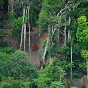 Le Brésil, pays le plus dangereux pour les défenseurs de l'environnement