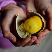 Au Chili, Kinder et McDonald's sont priés de remballer leurs jouets