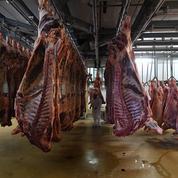 Trois abattoirs fermés après des inspections menées en avril