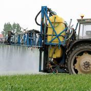 Pesticides: un risque mal évalué pour les agriculteurs
