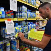 Les cours mondiaux du lait guident les prix français
