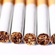 Boom des saisies de tabac de contrebande