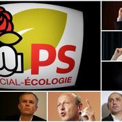 Qui sont les neuf candidats à la primaire à gauche ?