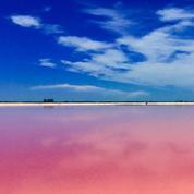 Un lagon... rose au Mexique