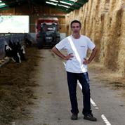 Pourquoi les éleveurs ont besoin de Lactalis (et réciproquement)